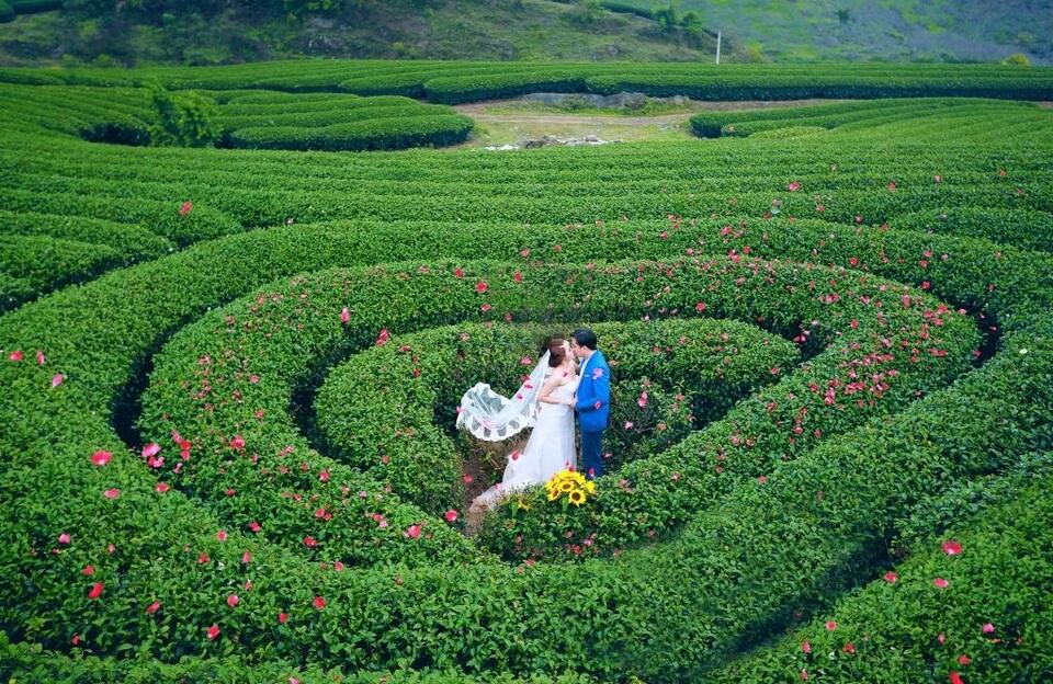 Địa điểm chụp ảnh cưới tuyệt đẹp ở Mộc Châu